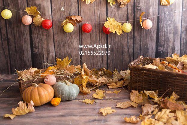 دانلود بکگراند پاییز