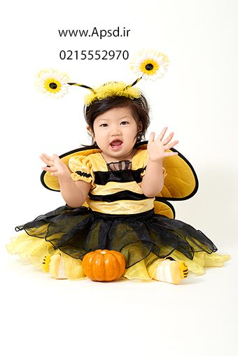 دانلود فون زنبوری